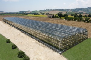 Photovoltaik Greenhouse Italy